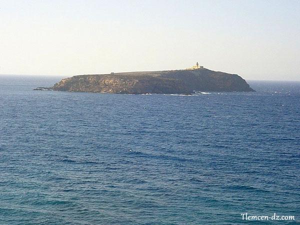 L'île Rachgoun